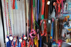ayvalik-pet-shop-25