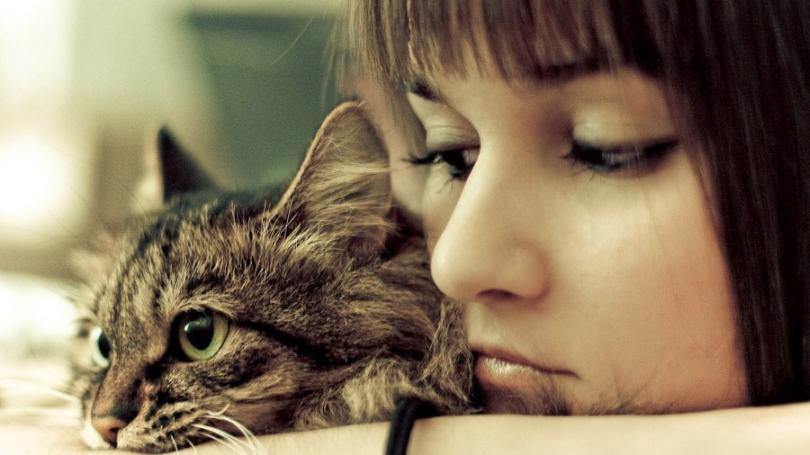 kedi ve sahibi