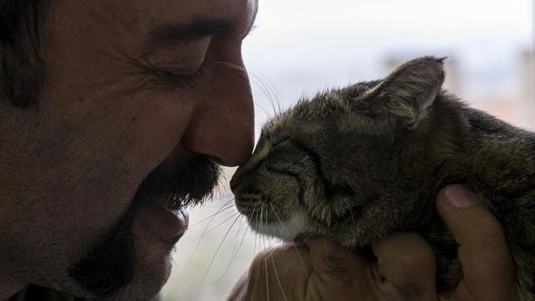 kediyi kurtardı